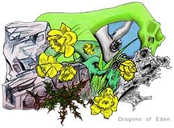 Dragons Of Eden, Crystal Garden Gifts