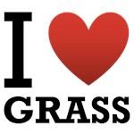 I Love Grass