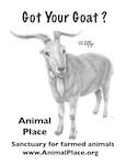 Got Your Goat?