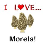I Love Morels