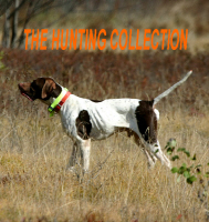 The Hunting Collection