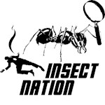Revenge of the Insect Nation