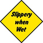 Slippery When Wet 2