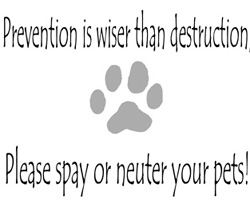 Prevention is Wiser...