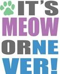 Its Meow