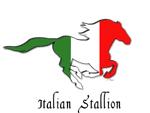 Itallian Stallion