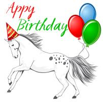 HAppy Birthday Appaloosa Horse