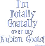 Totally Goatally Nubian Goat