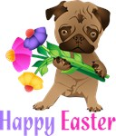 Happy Easter Pug with Flowers