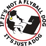 Fly Ball Dog