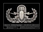 Badge Technicals