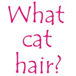 What Cat Hair?