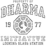 Dharma Looking Glass
