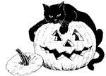 Black Cat & Jack O'Lantern