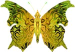 Marbled-Wing B-fly Green & Yellow