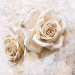 Vintage Rose IV