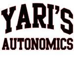 Yari's Autonomics
