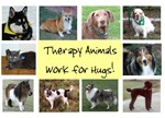 Animals Work for Hugs!