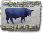 Breezy Knoll Ranch