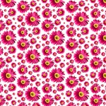 Hot Pink Daisy Pattern