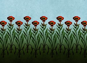 Tall Red Flowers