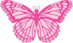 Pink Butterfly Graphic T-shirts
