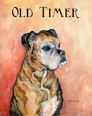 Old Boxer Portrait