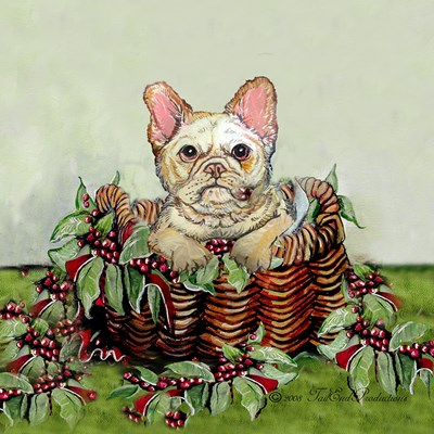 French Bulldog Collection