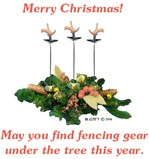 Fencing Christmas