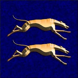 Greyhound Equality