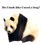 Do I look Like I need a Hug?