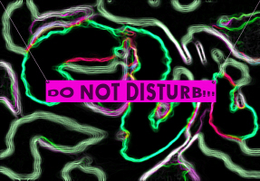 HUMOR/DO NOT DISTURB