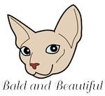 Baldy Cat