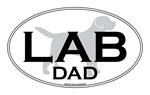 LAB DAD II