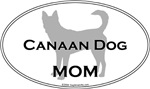 Canaan Dog MOM