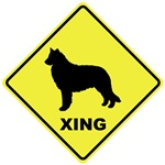 Belgian Sheepdog Crossing