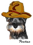 Cowboy Puppers