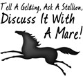Discuss It With A Mare! Funny equestrian quote