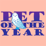 Hedwig: Pet of the Year