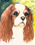 Classic Cavalier King Charles Spaniel