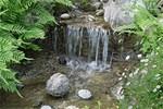 Pond Waterfall