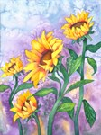 Sunny Sunflowers Watercolor
