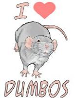 <b>I Love Dumbo Rats</b>