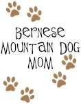 Bernese Mt. Dog Mom