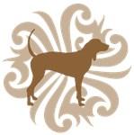 Brown & Tan Coonhound