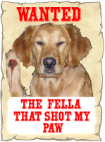 WANTED: THE FELLA THAT SHOT MY PAW