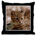 Geoffroy Cat Pillows