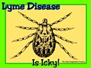 Lyme Disease Is Icky