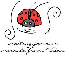 Waiting on Our Miracle from China Adoption Ladybug