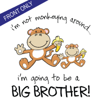 big brother monkey around